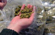 Работник костанайского СТО хранил марихуану в машине