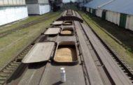 Прогнозы экспорта казахстанского зерна повышены исключительно за счет пшеницы