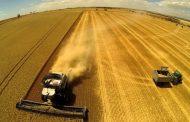 Казахстан: Уборка зерновых костанайскими аграриями выполнена на четверть