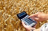 Кредиты под залог будущего урожая смогут получать казахстанцы