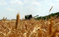 Внедрение аграрных расписок привлечет к 2021 году в АПК 100 млрд тенге