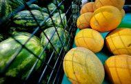 Почти 70 тонн казахстанских овощей и фруктов задержали на Алтайской таможне/