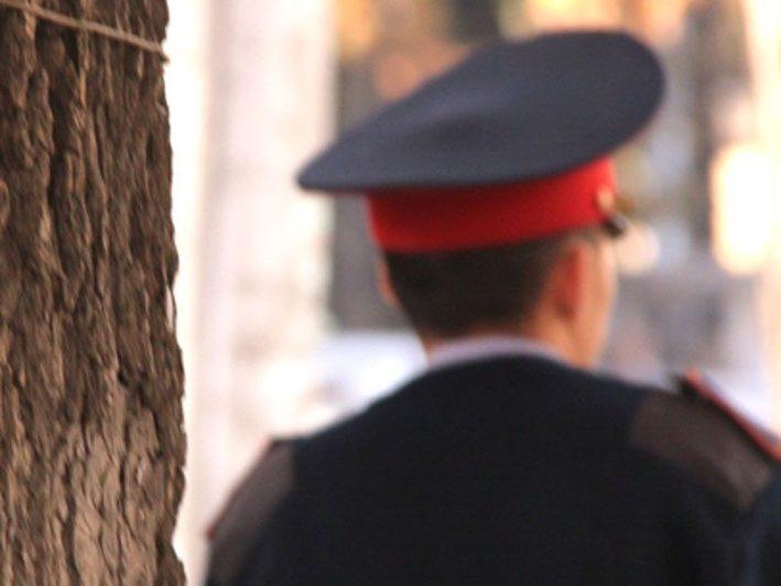 МВД: 1 сентября полицейским вернут жезлы