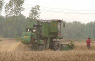 Китай готов инвестировать в создание сельхозцентра в Казахстане