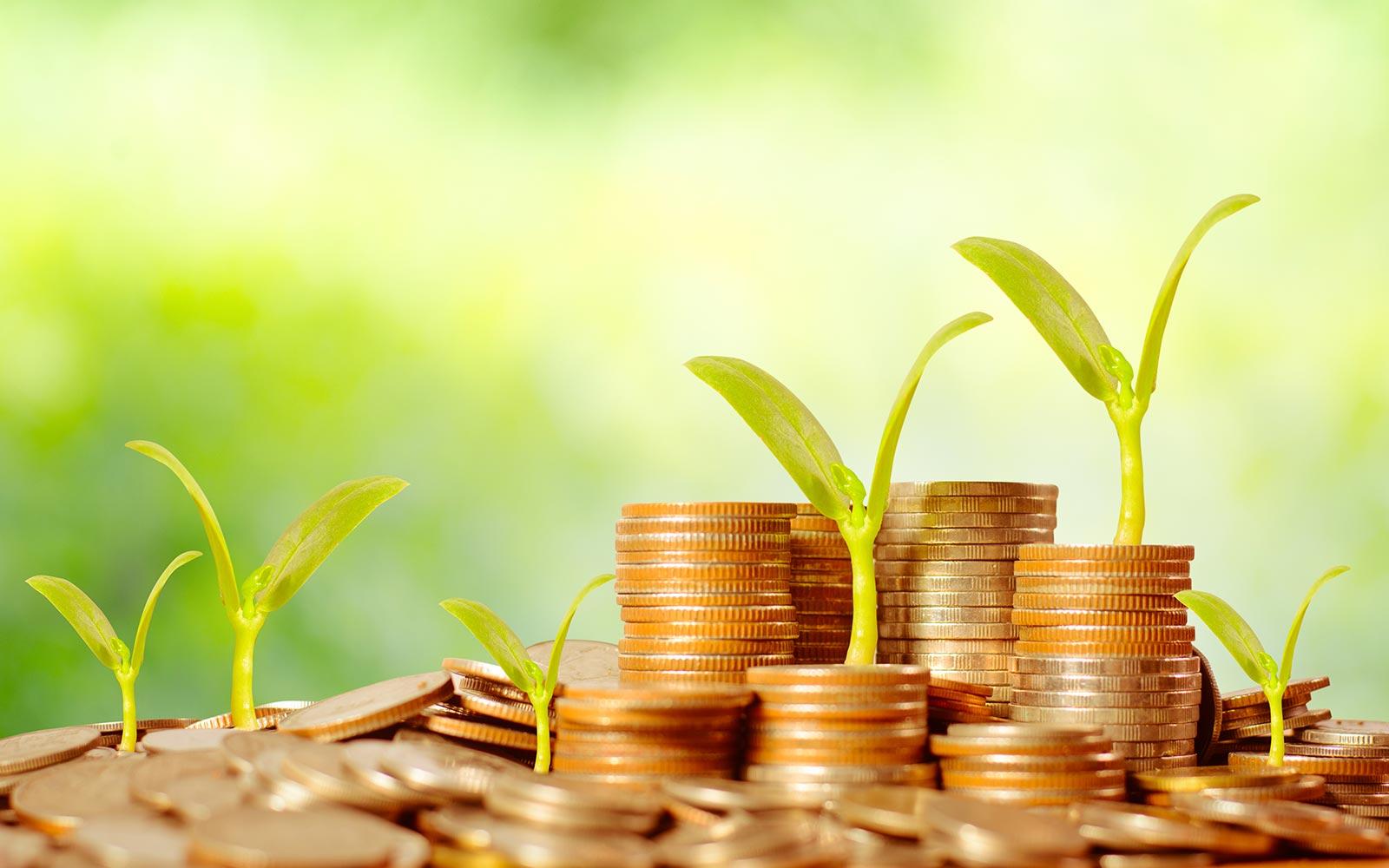 Доля вкладов населения в депозитной базе банков Казахстана выросла до 50%