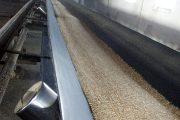 Казахстан: Наибольшую прибавку зерна за август получила Костанайская область