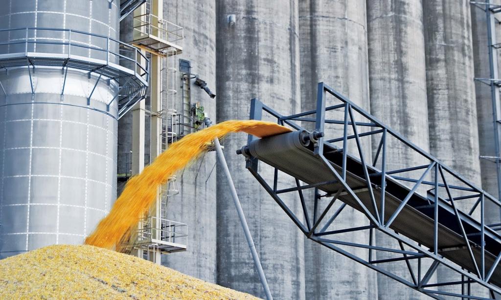 В Костанае построят комплекс по переработке масличных и зерновых культур