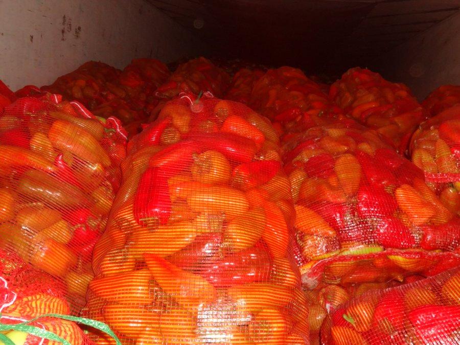 Опасные фрукты и овощи из Казахстана и Кыргызстана задержали на границе Оренбургской области