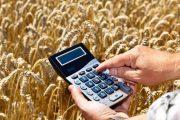 В Казахстане 64 фермерских хозяйства попали в долговую зависимость
