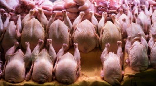 Кыргызстан ограничил ввоз мяса птицы и яиц из Казахстана