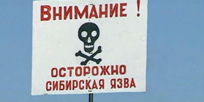 Роспотребнадзор сообщает о распространении сибирской язвы в Казахстане и Украине