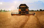 Какие страны Казахстан кормит зерном
