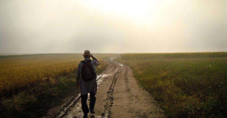 «Прогулялся» на статью: в Зауралье осудили мигранта, пришедшего пешком из Казахстана