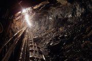 С начала года выросло производство напитков, добыча нефти и руд цветных металлов