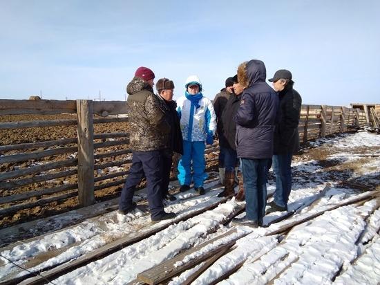 В Бурятию зашел крупный агрохолдинг из Казахстана