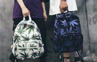Полиция Костаная задержала мужчину с килограмом марихуаны в рюкзаке
