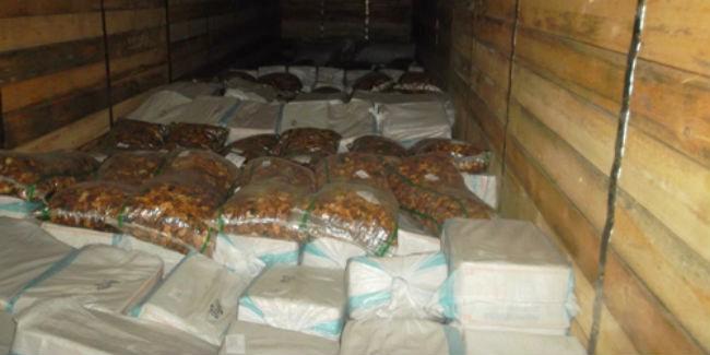 Омские пограничники задержали 40 тонн сухофруктов и огурцов из Казахстана