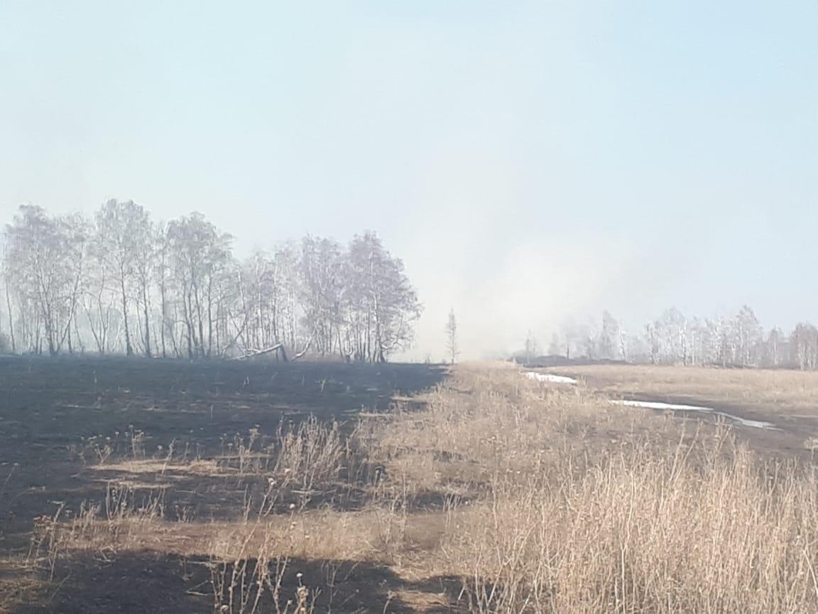 Полевой пожар перекинулся из Костанайской области на территорию России