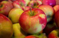 Таможня не пустила в Новосибирск польские яблоки с казахскими документами