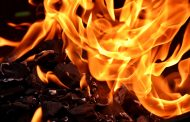 При пожаре на фабрике «Жас-Канат 2006» погибли более 5 тыс. птиц