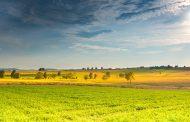 В Казахстане государственная поддержка аграриев достигла 292 млрд. тенге
