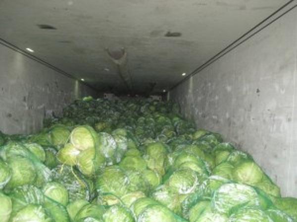 В Оренбуржье уничтожили мясо и свежие овощи из Казахстана