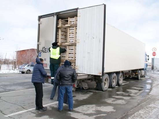 В НСО опять уничтожили 19 тонн польских яблок из Казахстан