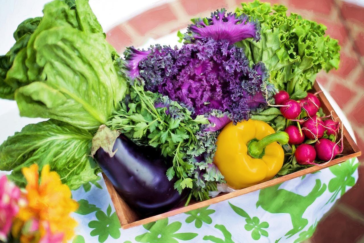 Пресечён незаконный ввоз растительной продукции из Казахстана и Киргизии