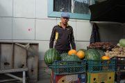В Костанайской области начался сезон продажи арбузов и дынь