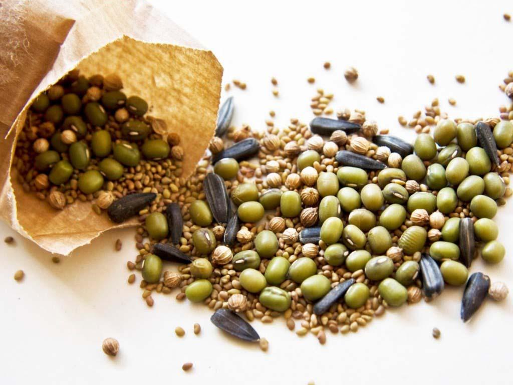 В Алгае пресекли нелегальную торговлю семенами из Казахстана