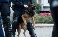 В Германии мигрант покусал полицейского и служебную собаку