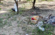 Аким Павлодарской области возмутился горами мусора на берегу, где сам наводил порядок