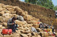 Археологи Казахстана обнаружили останки возлюбленных бронзового века