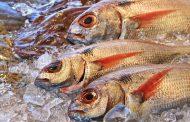 Челябинцев лишили костанайской рыбы