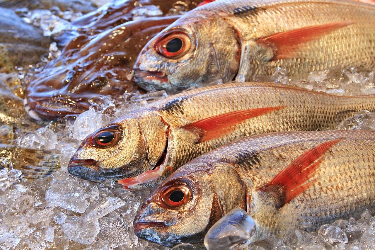 Более 16 тонн казахстанской рыбы не довезли до Германии