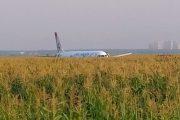 Airbus «Уральских авиалиний» экстренно сел с загоревшимся двигателем в Подмосковье на кукурузном поле. На борту находились 234 человека, все живы