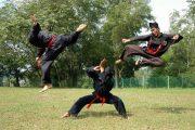 В Казахстане зарегистрировали новый вид боевых искусств