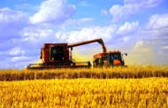 Экспорт сельхозпродукции из Казахстана вырос на 7,4%