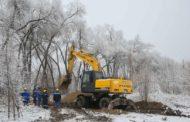 В Алматы вырубили 11 тысяч деревьев ради строительства ТРЦ. Слушаний по сносу не было