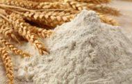 Союз зернопереработчиков Казахстана надеется на частичную отмену запрета на экспорт муки