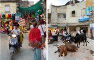 «При виде нас кричат корона»: застрявшие в Индии казахстанцы стали изгоями