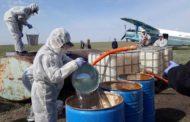 В Павлодар пригласили фирму, погасившую вспышку чумы в США