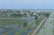 Туркестанская область: в 4,1 млрд. тенге оценен ущерб сельхозпроизводителей Мактааральского района от наводнения