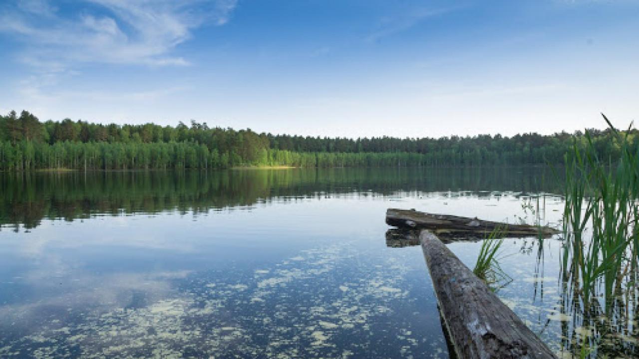 Крестьянин заплатил акиму скотом на 7 млн тенге, чтобы присвоить озеро