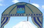 В Казахстане расследуется массовая гибель диких водоплавающих