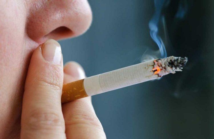 Виды некурительных табачных изделий купить сигареты sauvage в спб