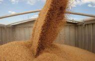 К уборке и хранению зерна готовы