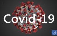 От ковида и вирусной пневмонии в Казахстане за 3 месяца умерли около 24 тысяч человек?
