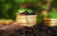 Почему аграрии Костанайской области продолжают платить налоги на землю во время пандемии