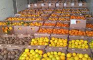Едва не замерзли в СКО направлявшиеся в Россию с грузом фруктов таджикистанцы